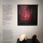 「ノザイナー かたちと理由」展 @ggg を見て、自然物と人工物のデザインに思いを馳せてみる